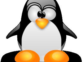 linux img logo