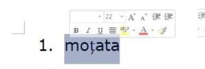 Probleme de Font, diacritice si Spelling Checker in Word