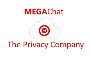 Kim Dotcom lanseaza MegaChat varianta beta (SkypeKiller)