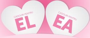 IT&C Promotii de Valentine's Day: evoMAG F64 elefant.ro