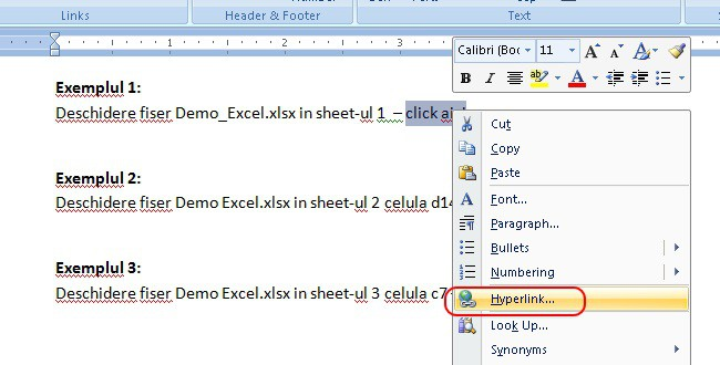 Hyperlink care iti deschide un Excel intr-un sheet (foaie de lucru) dedicat
